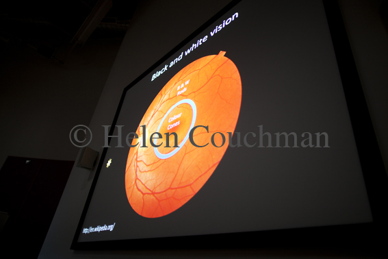 Cambridge Science Week 2012, 'The Limits of Seeing' © 2012 Helen Couchman
